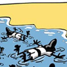 Lampedusa, plus jamais ça... - Le dessin du jour, par Dilem (Algérie)