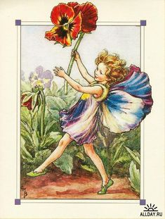 Illustration for the Pansy Fairy from Flower Fairies Author / Illustrator Cicely Mary Barker Cicely Mary Barker, Flower Fairies, Flower Crowns, Fairy Land, Fairy Tales, Fleur Pansy, Decoupage, Fairy Pictures, Vintage Fairies