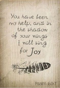 love this verse. can not count the times I have imagined being hidden under the shadow of His wings