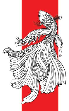 Betta Fish on Behance Koi Fish Drawing, Fish Drawings, Pencil Art Drawings, Art Drawings Sketches, Tattoo Design Drawings, Ink Illustrations, Line Art, Koi Kunst, Fish Sketch