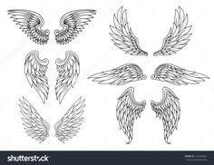 Heraldic Wings Set For Tattoo Or Mascot Design. Jpeg Version Also Available In Gallery Stock Vector Illustration 154704584 : Shutterstock