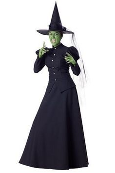 Wicked Witch of the West costume, i found one of these at the thrift store last year for 20 bucks. Its an $80 costume online lol.