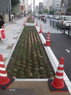Sidewalks used for urban agriculture