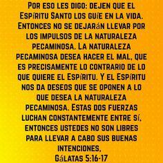 #BuenosDiasATodos #FelizSabado #SabadoDeGanarSeguidoresparaCristo #AlaboaDios #SaludosyBendiciones #SinAmornoSoyNada #Justicia #intachable #VenezuelaOra #Dios     ☺