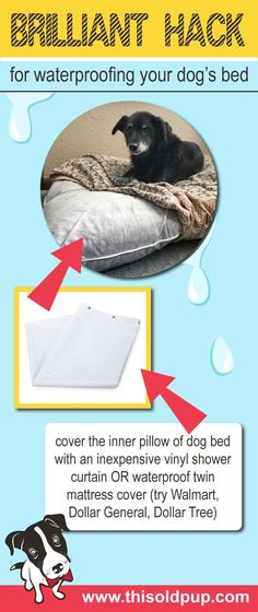 incontinence is a common ailment among old Check out this DIY waterproof dog bed hack. Simple, quick and inexpensive!Urinary incontinence is a common ailment among old Check out this DIY waterproof dog bed hack. Simple, quick and inexpensive! Yorkies, Chihuahuas, Game Mode, Diy Pillow Covers, Diy Pillows, Diy Dog Bed, Old Dogs, Pet Beds, Diy Stuffed Animals
