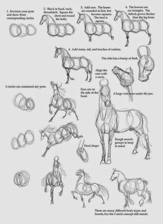 how to draw a horse.. | Schulman Art