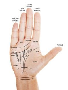 We Bet You Were Not Aware of These Interesting Palm Reading Facts - Astrology Bay Wiccan Spells, Love Spells, Indian Palmistry, Reading Facts, Volleyball Tips, Les Chakras, Palm Reading, Save My Marriage, Marriage Advice