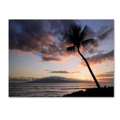 'Palm Tree Maui' by Pierre Leclerc Wrapped Photographic Print on Canvas
