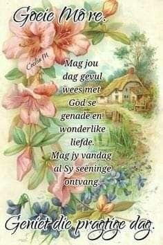 Discover recipes, home ideas, style inspiration and other ideas to try. Good Night Blessings, Morning Blessings, Good Morning Wishes, Day Wishes, Good Morning Images, Good Morning Quotes, Sunday Messages, Morning Messages, Lekker Dag