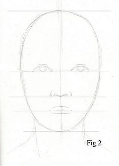 Drawing lesson for Beginner artists: Proportions of the face, front view - Step 3 : Guidelines