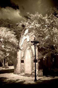 Elmwood Cemetery, Memphis Tn by Paula Cravens