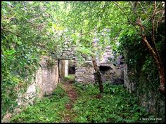 Grace O'Malley, The Pirate Queen,  ruins in Ireland