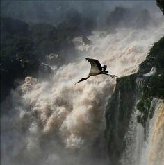 Cataratas del Iguazú, Provincia de Misiones,Argentina.