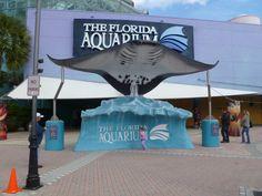 10. The Florida Aquarium Need A Vacation, Florida Vacation, Florida Travel, Travel Usa, Florida Trips, Travel Info, Places In Florida, Florida Beaches, Family Vacation Destinations