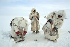 Nenets men check their fish net set under the ice on a lake in the Gydan Peninsula. W.Siberia, Russia © Bryan and Cherry Alexander / LUZphoto