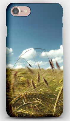 iPhone 7 Case Ears, Field, Clouds, Wind, Agriculture