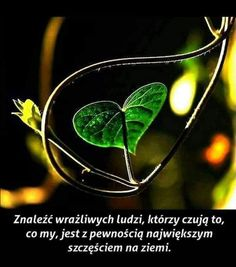 Plant Leaves, Thoughts, Humor, Quotes, Inspiration, Relationships, Good Morning, Poster, Quotations
