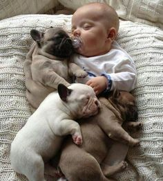 I'm not sure what it is about dog and baby pictures, but this one is just as adorable. Makes me think of my little puppies #missthem