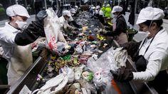 Viaje al gran estómago que digiere la basura   Galicia   EL PAÍS