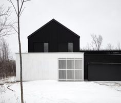 Monochrome exterior. We are leaning towards keeping it B&W.  Using burnt timber to add touches of black where we might want to use wood (eg screens for outside etc).