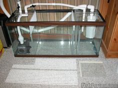 i was planning on building a sump for my 55 gallon. could anyone give me some layouts on a sump. i was thinking of using a 10 gallon tank but if anyone. Aquarium Sump, Saltwater Aquarium Fish, Saltwater Tank, Reef Aquarium, Freshwater Aquarium, Fish Aquariums, Diy Aquarium Filter, Fish Stand, Indoor Water Features