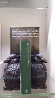 These bookends are lovely! Found them at New York Public Library
