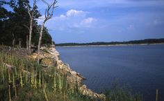 Mark Twain State Park 45 minutes from Hannibal MO. With camping, lake access, and several hiking trails.