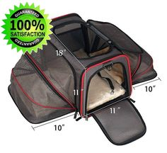 Southwest Airline Pet Carrier American Under Seat JetBlue Approved Airport Black #Petpeppy