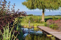 Zicht op landschap vanuit deze landschappelijke poldertuin te Ouderkerk aan den IJssel. Tuinontwerp: De Tuinregisseurs.