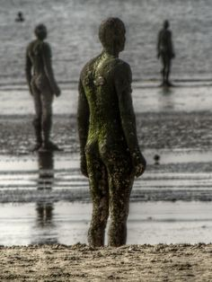Antony Gormley's Another Place. Installation of cast iron figures on Crosby Beach near Liverpool.
