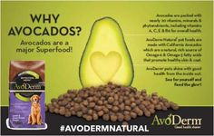 This post is #sponsored by Avoderm and the BlogPaws Professional Pet Blogger Network. I am being compensated for helping spread the word about #Avoderm Rotational Menu but Dog & His Boy only shares information we feel is relevant to our readers. Avoderm is not responsible for the content of this article.