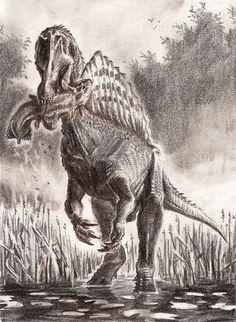Spinosaurus aegyptiacus by tuomaskoivurinne on DeviantArt