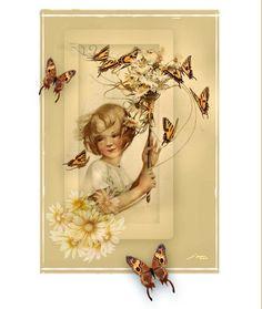 Butterflies Butterflies, Album, Digital, Gallery, Painting, Picasa, Roof Rack, Painting Art, Butterfly