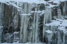 Image result for icicles hanging from trees