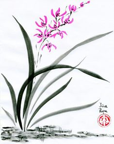 Chinese Orchids.....