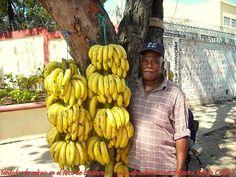 Bananas  El Barahonero: Vendedor de guineo en el Arco de Barahona