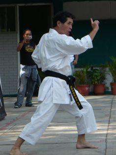 Sensei Ishikawa (SKIF)