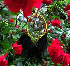 Little weightless Dreamcatcher in the bushes of roses. Heralds the coming of summer