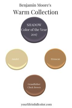 "Benjamin Moore's ""Shadow"" 2117-30 plays beautifully with their warm trend colors Amulet AF-365, Etruscan AF-355, and Grandfather Clock Brown 2096-30."