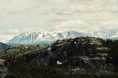 british columbia  yukon territory  canada landscape photography mountain wall art green home decor klondike highway alaska AK03 by eireanneilis