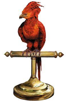 Fawkes The Phoenix Concept Artwork