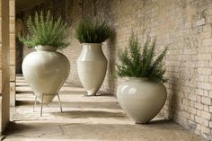 Vessou Vases - Working with architects, designers & select retailers. Flower Planters, Flower Pots, Planter Pots, Container Plants, Container Gardening, Back Gardens, Outdoor Gardens, Outside Decorations, Landscape Elements