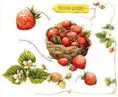 Strawberries (Art by Marjolein Bastin)