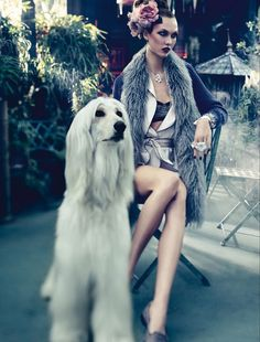 high fashion photo shoots with dogs - Google Search