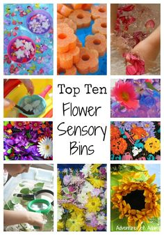 Top 10 Flower Sensory Bins that are perfect for Spring and Summer!