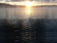 This image was found on this great website,  notes.newmaker.net Algonquin Park, Notes, River, Website, Outdoor, Image, Outdoors, Report Cards, Rivers
