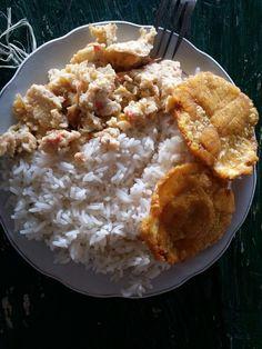 La alimentación indígena amazónica colombiana se basa en Fariña, pescado de río, arroz, plátano y yuca principalmente.