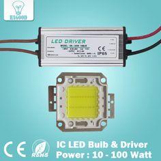 Reale Volle Watt 10 Watt 20 Watt 30 Watt 50 Watt 100 watt High Power COB LED lampe Chips Birne mit Led-treiber Für DIY Flutlicht Spot licht Rasen