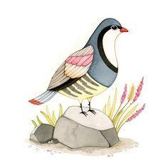 Aquarelles d'oiseaux  art d'archives 8 x 10 imprimer par joojoo