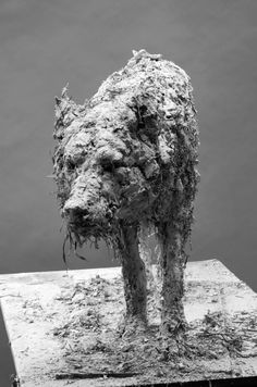 "Nicola Hicks, ""Grey,"" plaster and straw (to be cast in bronze), 32 x 12 x 72 in. #animalsinart #wolvesinart"